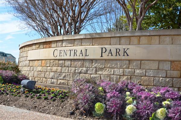 Central Park Frisco